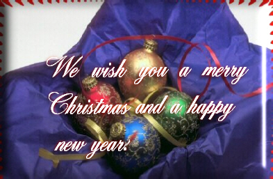 We wish you a merry christmast and a happy new year
